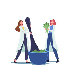 Tiny female pharmacists characters grind plants vector