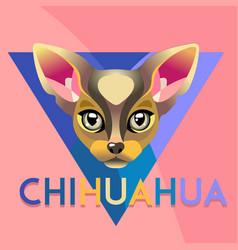 abstract dog chihuahua vector image