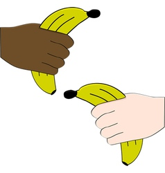 Hands holding bananas vector image