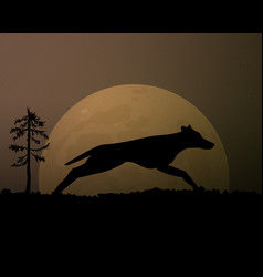 Moon in the night silhouette black wolf magic vector