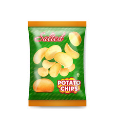 Potato chips salted packaging design vector