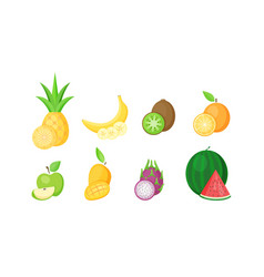 set isolated tropical fruits with slices vector image