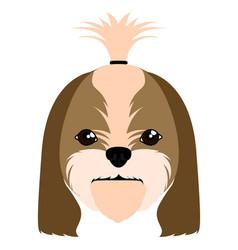 Shih tzu avatar vector