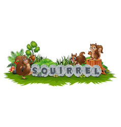 squirrel are playing in the garden vector image