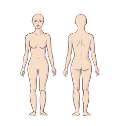 Woman body front and back vector