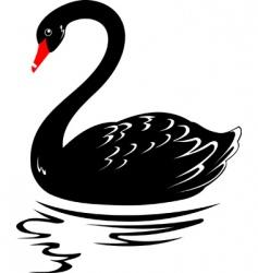 blackswan vector image vector image