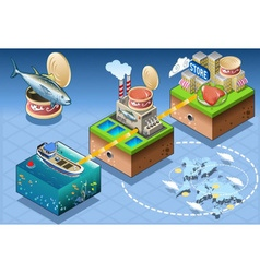 Isometric Infographic Tuna Distribution Chain vector image