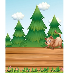 A cat above the empty wooden boards near the pine vector image