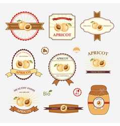 Apricot set of label design vector