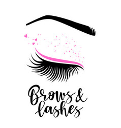 brows and lashes lettering vector image