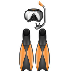 Diver equipment snorkel mask and flippers vector