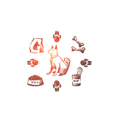 dog pet animal accessories care concept hand vector image