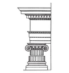 Roman ionic order column originated vector