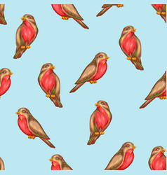 seamless pattern with bullfinch birds vector image