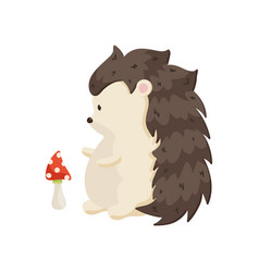 Small pot-bellied hedgehog stands on its hind paws vector