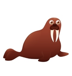 Walrus on a white background vector