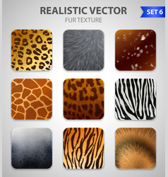 Wild animals fur texture set vector