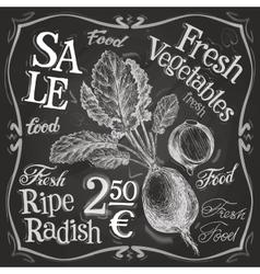 radish logo design template fresh food vector image vector image