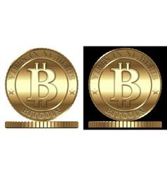 Bitcon vector image