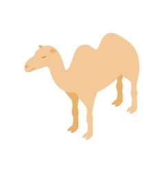 Camel icon isometric 3d style vector image