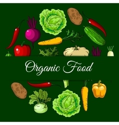 Organic vegan food vegetables poster vector