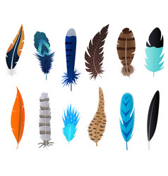 realistic 3d detailed feathers bird set vector image