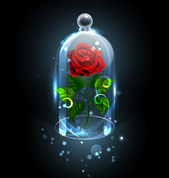 Red rose under the crystal dome vector