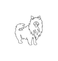 single one line drawing cute pomeranian dog vector image