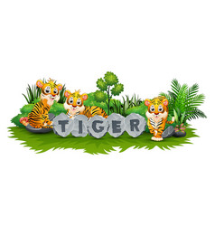 tiger is playing in the garden vector image