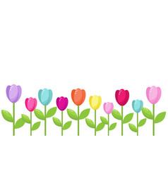 Tulip color border vector
