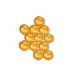 bee honeycomb in orange design with shadow vector image vector image