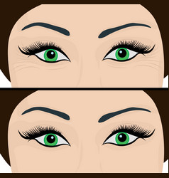 wrinkles and fine lines under eyes to remove vector image