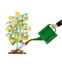 money coin tree growing money tree vector image vector image