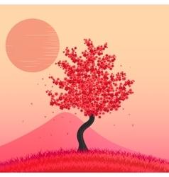 sakura japan cherry vector image