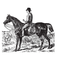 A light hunting horse vintage vector