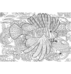 Exotic Zentangle Cockatoo Parrot For Adult Anti Stress Coloring ... | 250x238