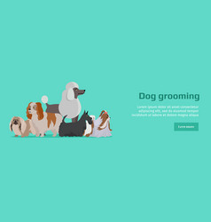 Dog grooming banner long haired dog breeds vector