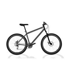 new grey bicycle vector image