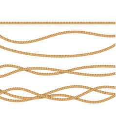 realistic 3d detailed rope for decoration vector image