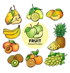 set colorful hand draw fruit vector image