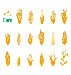 Set of icons and logos with corn on a white vector