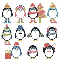 Set of penguins in winter vector image