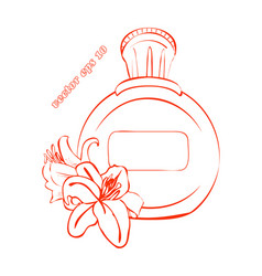 simple bottle with two lily flowers vector image