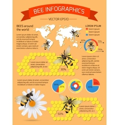 Bee infographics set vector image