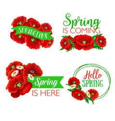 Spring time greeting quotes flowers design vector