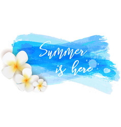 summer is here watercolor brushed background vector image vector image