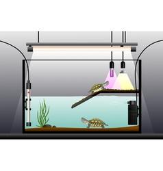Aquaterrarium vector image