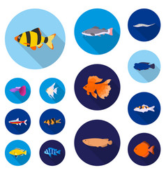 Different types of fish flat icons in set vector