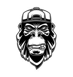 Gorilla in baseball cap on white background vector