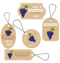 Labels with various fruitsfor grape vector